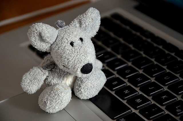 mouse-500990_640